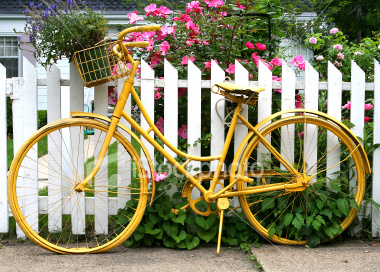 ist2_4332528-old-yellow-bike-by-a-fence-with-flowers